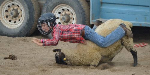 HAZELCLIFFE:- Twin Valley Riding Club Rodeo in 170 pictures!