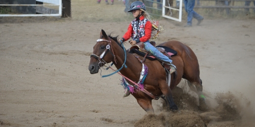 TVRC Rodeo - In pictures